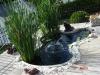 fish-ponds-001